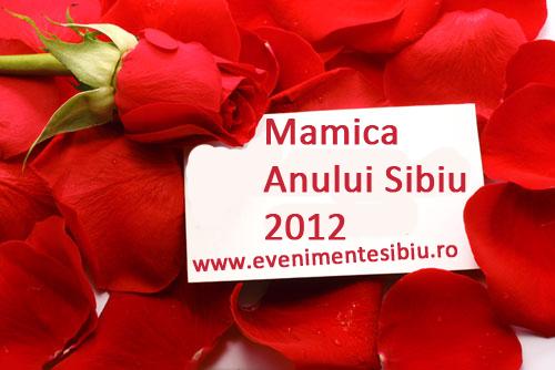 Mamica Anului 2012 in Sibiu!