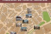 Expozitia: Drumul Colectiilor Muzeului de Istorie Naturala